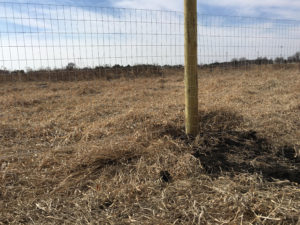 Wooden Posts and Wire Fencing