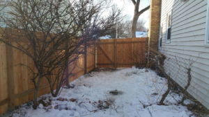 Wood Winter Fence Install