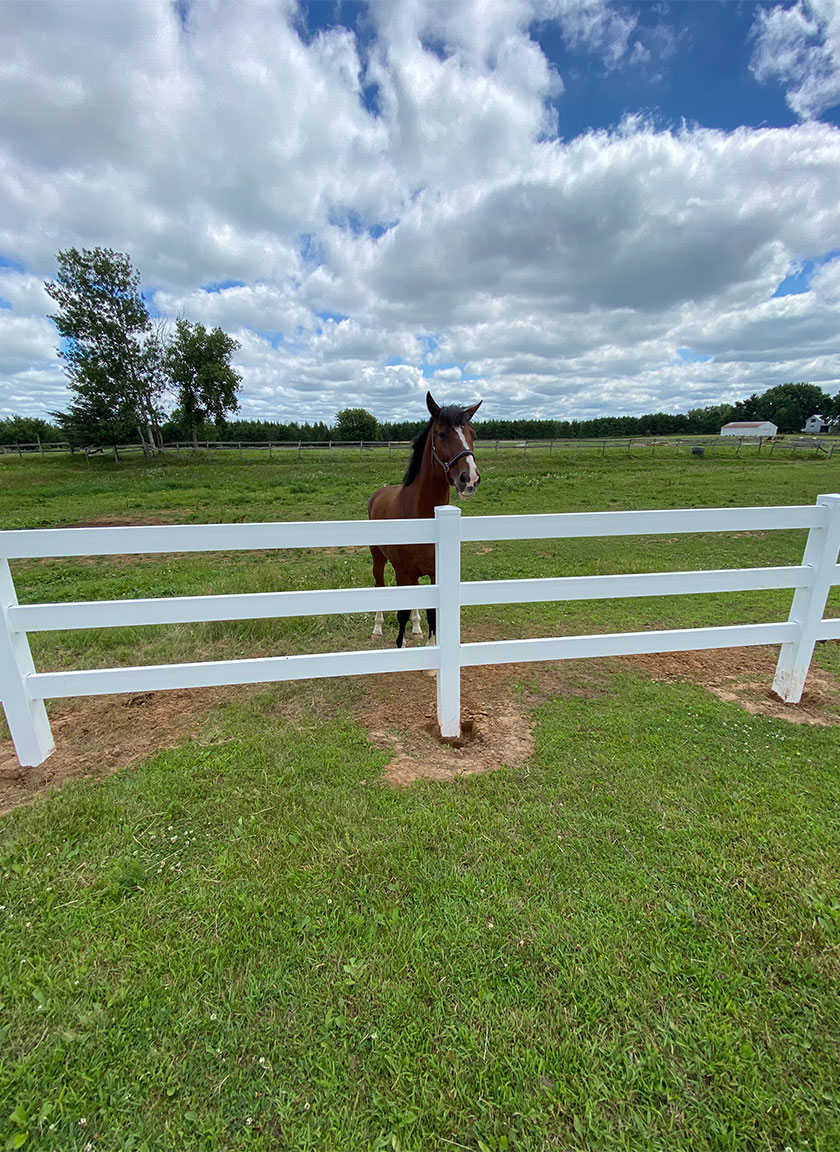 Split Rail Ranch or Farm Fencing System installed by Twin Cities Fence: Fence Contractor in MN